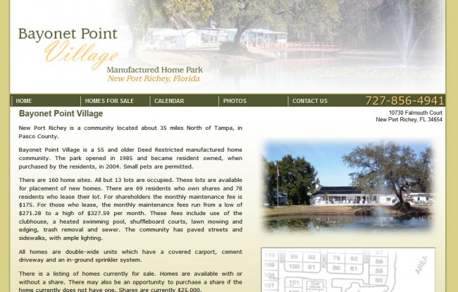 Bayonet Point Village